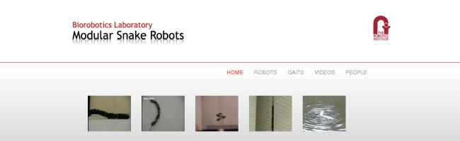 snakerobot Le robot serpent   impressionnant !