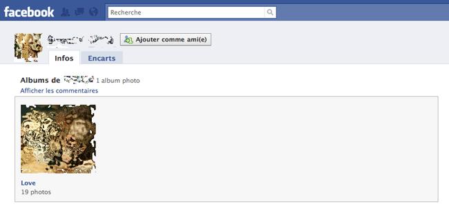 Capture d'écran 2010 04 28 à 12.42.13 Facebook   voir les photos dune personne qui nest pas amie avec vous