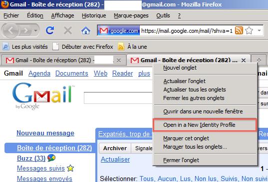 cap 2010 07 29 à 10.25.40 Multifox   Comment se logger avec différents comptes sur le même site