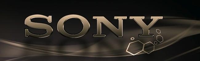 Sony à poil et en image