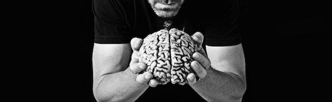 Le cerveau bavard