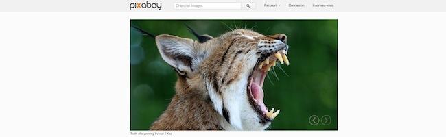 Pixabay – Des photos de qualité dans le domaine public