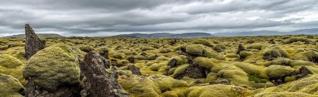 Pause Islandaise