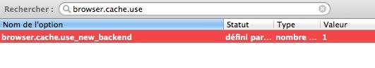 boom Comment activer le cache de nouvelle génération de Firefox