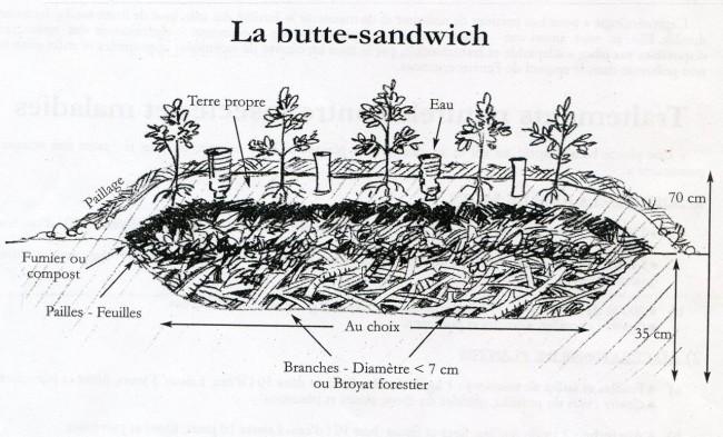 butte-sandwich007