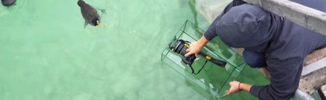 Astuces pour les photographes DIY