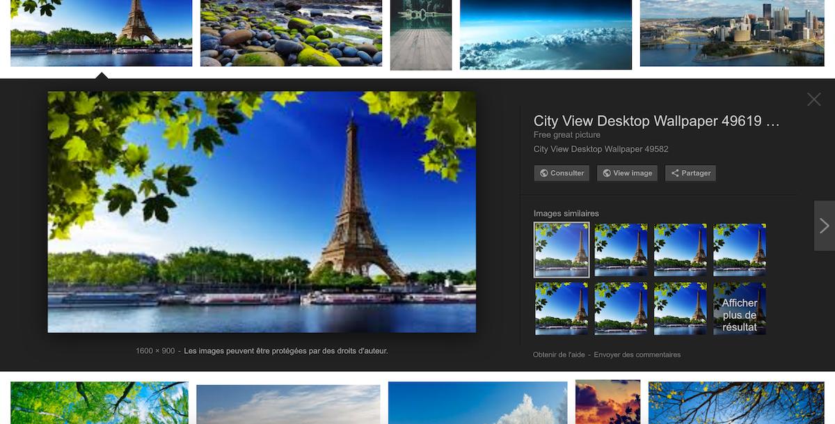 Plus de bouton «View image» sur Google Images ? C'est pas si grave…
